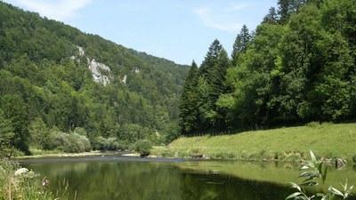 """Au bord de """"la rivière le Doubs"""" à Fuesse - Photo Claude Schneider - Copyright"""