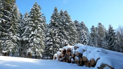 En hiver - Photo Claude Schneider - Copyrigth