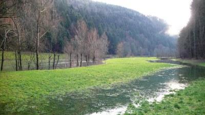 Au printemps au bord du Doubs - Photo Claude Schneider - Copyrigth