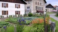 Dans le village - Photo Claude Schneider - Copyright