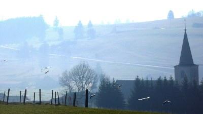 ... et que des cigognes se posent - Photo Claude Schneider - Copyright