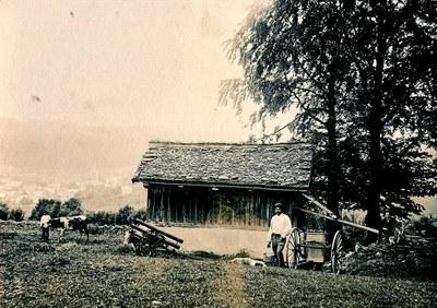 Agriculture 19è k673